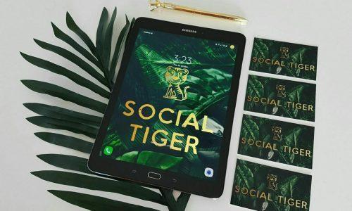 https://socialtiger.com.au/wp-content/uploads/2018/12/3fbc49ef-c8ca-49e0-b086-5ccf53fca05a_0-500x300.jpeg